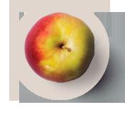 manzana-1
